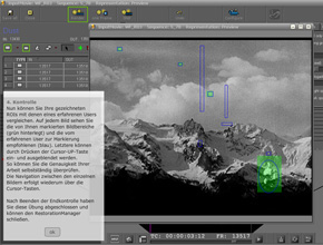Screenshot: Simulation DIAMANT-Software - Schritt 4: Ergebniskontrolle für den Nutzer